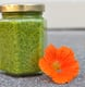 Perfectly Seasonal: Nasturtium Pesto