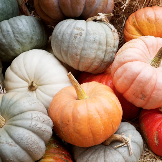 Pumpkin-Scented Beauty Products