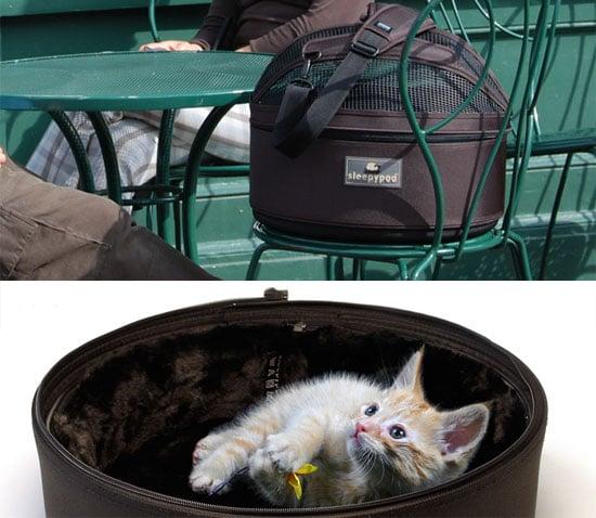 Win a Sleepypod Carrier Kit for Your Kitty!