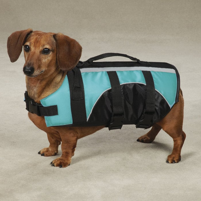 Guardian Gear Brite Dog Life Jacket