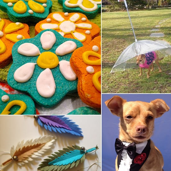Celebrate Spring Weather With POPSUGAR Pets' Must Haves