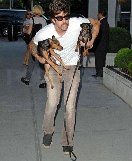 New Puppy Alert! Adam Goldberg