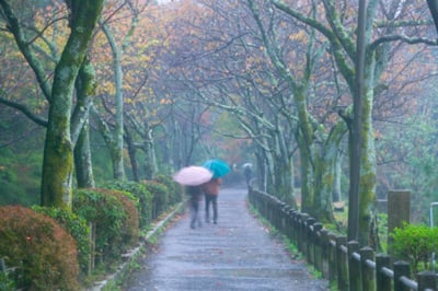 10 Tips For Surviving a Rainy Day