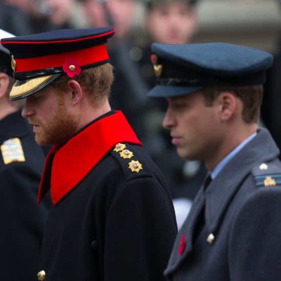 Prince Harry and Prince William on Remembrance Day 2015