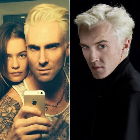 Does Adam Levine Look Like Draco Malfoy From Harry Potter?