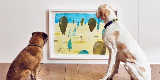 This Artist Created A Show Just For Dogs, And They Loved It
