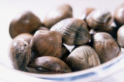 7 Surefire Sustainable Seafood Options