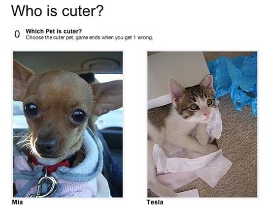 My Favorite Little Cutie?