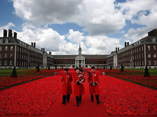 Can You Guess How Many Handmade Poppies Are in This Photo?