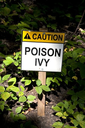 Baking Soda Relieves Itch of Poison Ivy, Poison Oak, and Poison Sumac