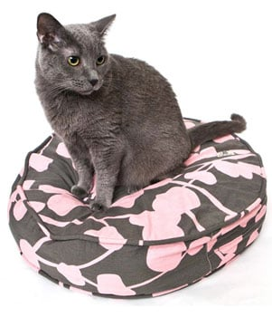 New Product Alert! Molly Meow