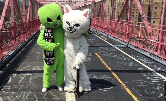 Love Skateboarding and Cats? Meet Lord Nermal