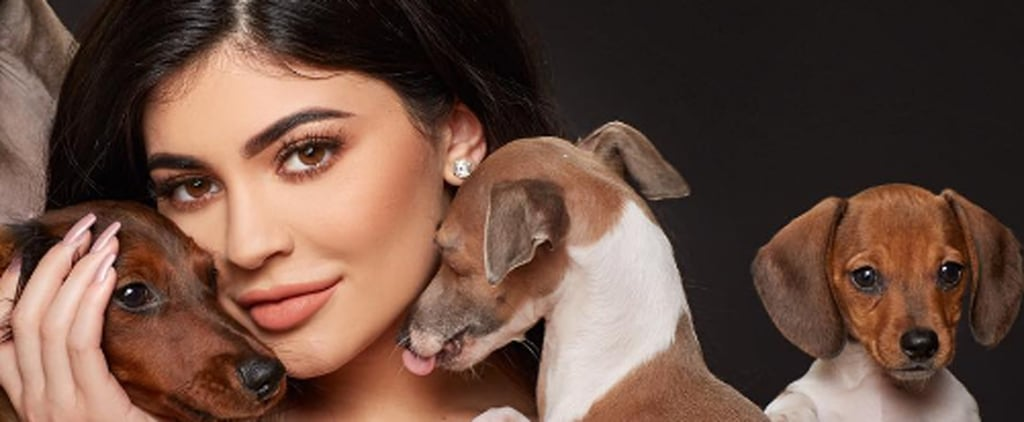 13 Times Kylie Jenner's Dogs Were the Most Glamorous Members of the Kardashian Crew