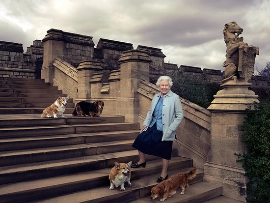 The Incredible, Compassionate Moment Queen Elizabeth and Her Corgis Helped a War Surgeon in the Throes of PTSD