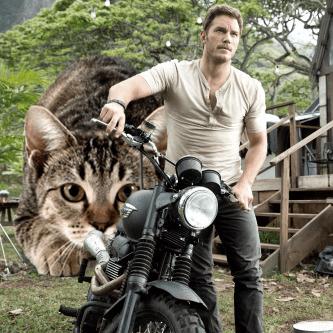 Jurassic World Cats Photoshop