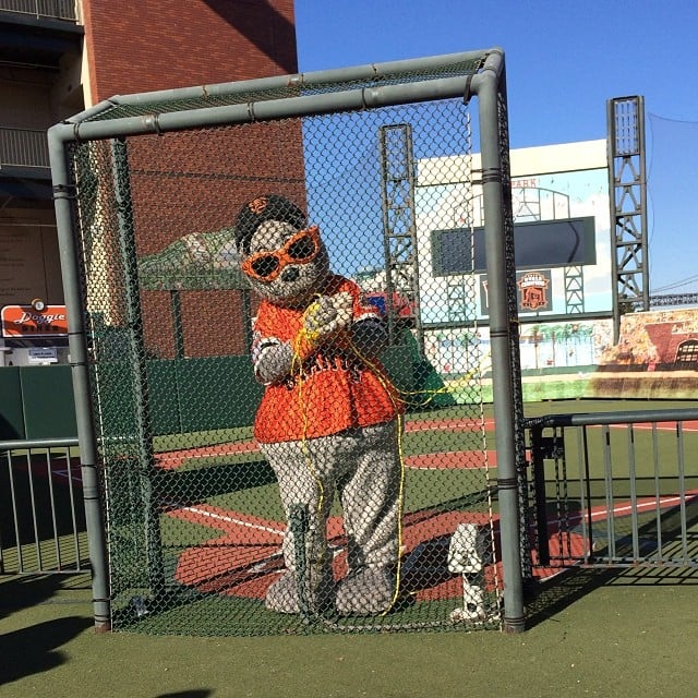 Lou the Seal, the Giants mascot, was tied up and ready to be saved at AT&T Park. Source: Instagram user clevergirlscoll