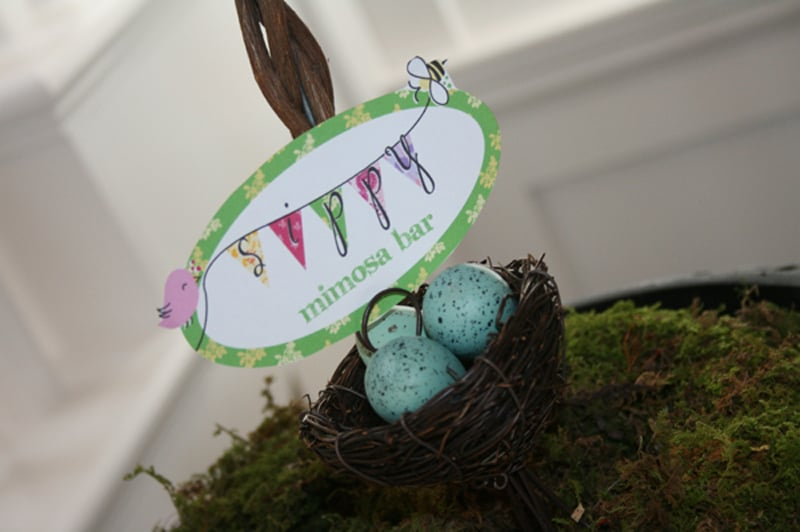 A Birds and Bees Tea For a Nesting Mama-to-Be