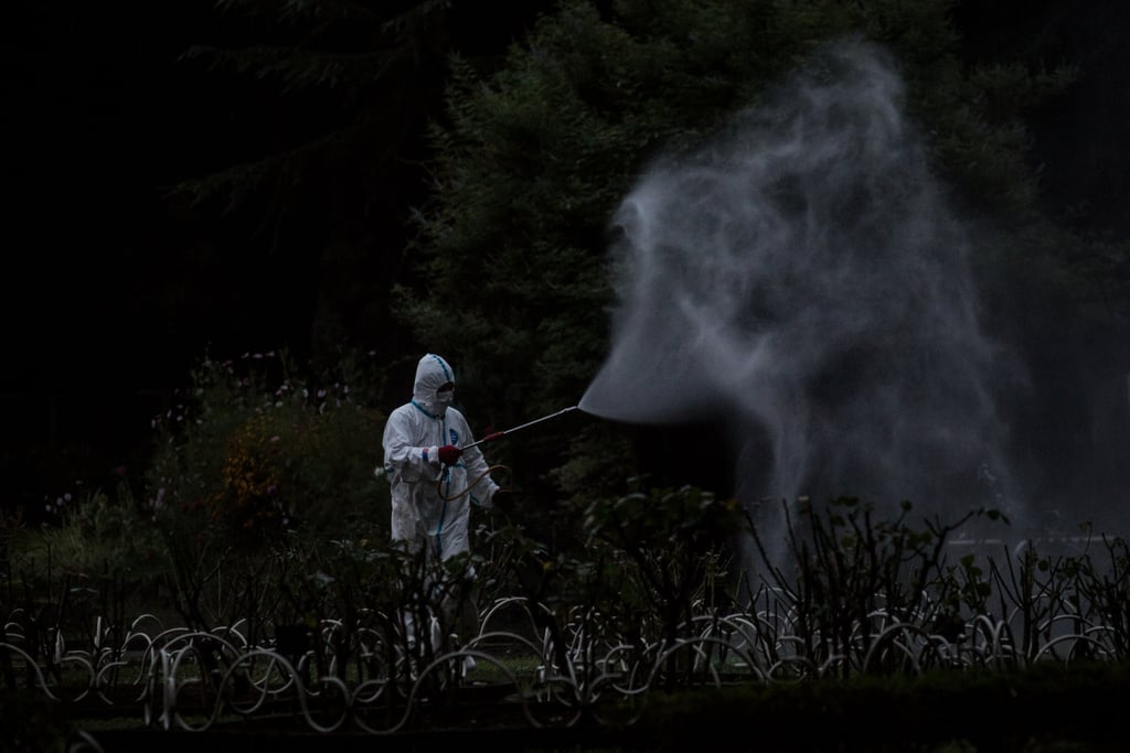 A worker sprayed pesticide at a park in Japan as the country deals with the first dengue fever outbreak in nearly 70 years.