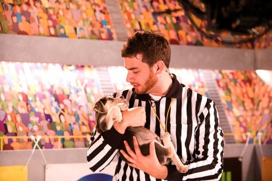 Interview With the Referee of Puppy Bowl V (Part I)