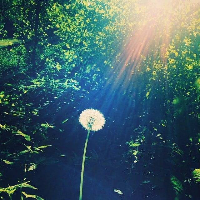 Jessica Szohr enjoyed the sun outside.  Source: Instagram user itsmejessicaszohr