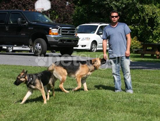 Jon Gosselin's Last Day With Shooka and Nala