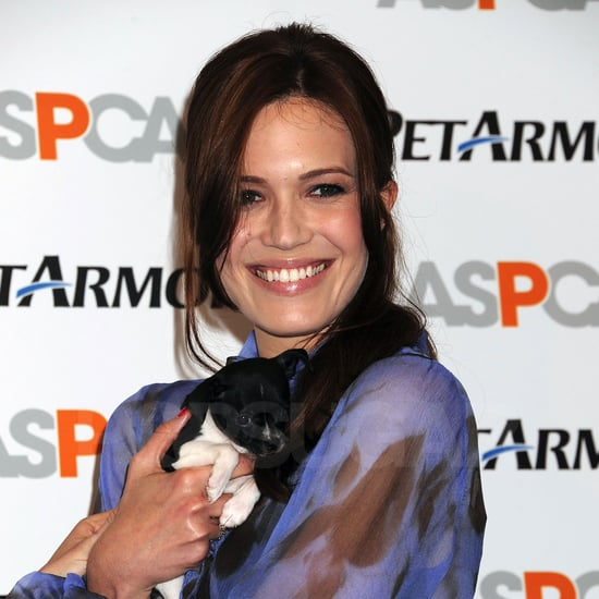 Pictures of Mandy Moore With Pets
