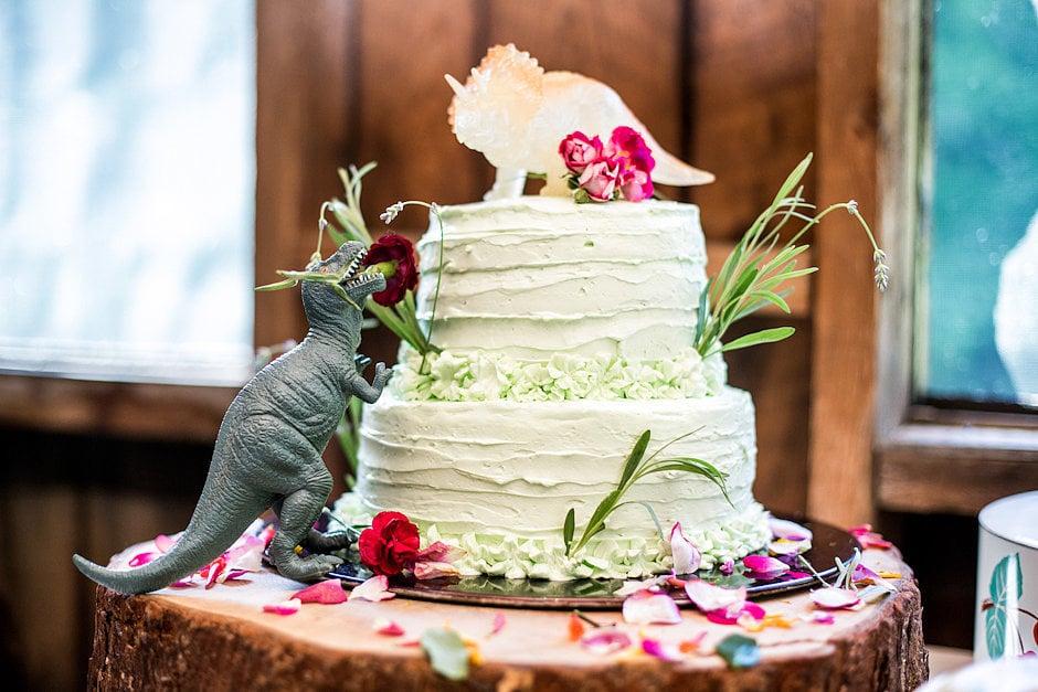 Moonrise Kingdom Cake