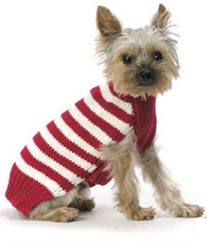 Candy Cane Sweater: Spoiled Sweet or Spoiled Rotten?