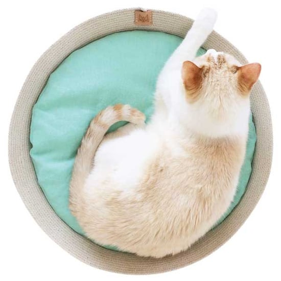 Check Out These Stylish Cat Beds, Pillows, and Blankets