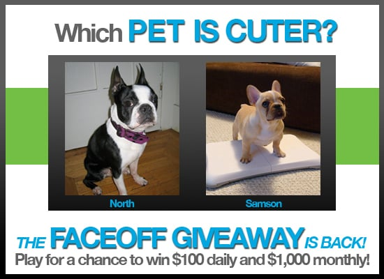 The Faceoff Giveaway Is Back — Pick Cuter Pets For a Chance to Win $100 Daily and $1000 Monthly!