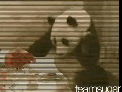 Panda Sneeze Mashup