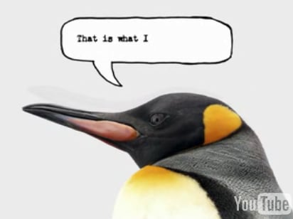 French Penguin — He Is Cute, No?