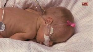 Photos of Michelle and Jim Bob Duggar's Baby Josie