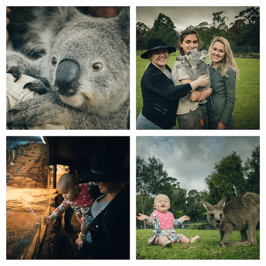 Kelly Clarkson Takes River Rose to Australian Zoo