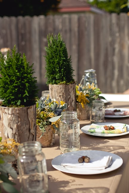 Take Your Baby Shower to the Great Outdoors With a Rustic, Camping-Themed Party