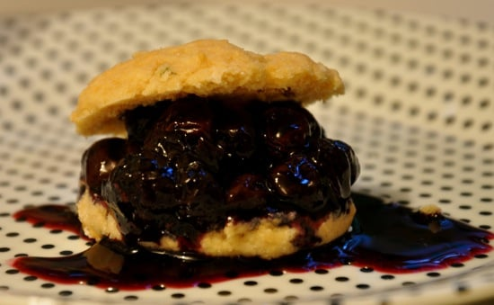 Blueberry Biscuit Shortcakes