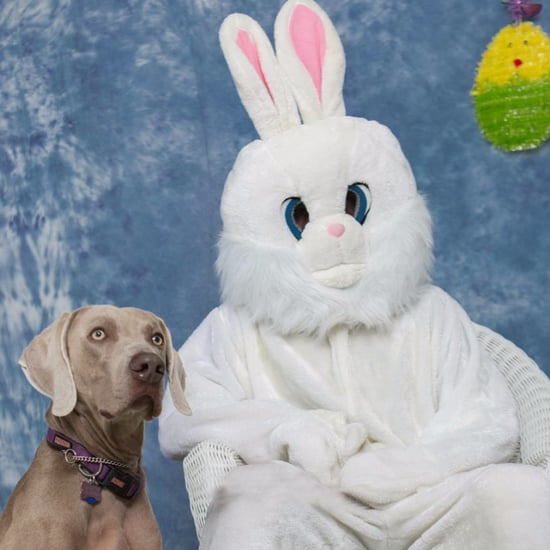 Funniest Easter Fails