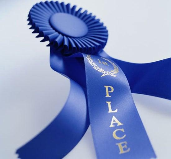 2008 Westminster Winner: Best in Show!