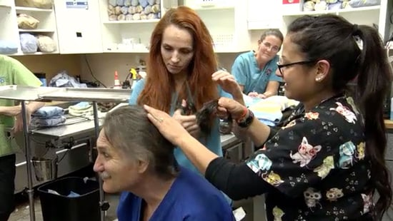 Rocky Mountain Vet Dr. Jeff Young Cuts His Signature Long Locks Before Facing Down Cancer Battle