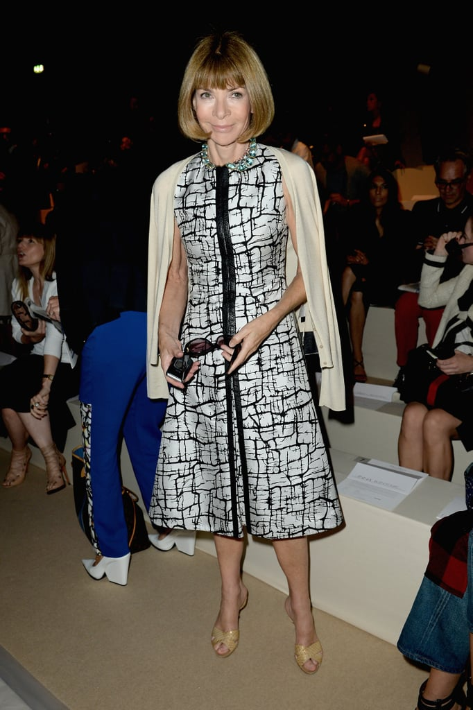 Anna Wintour debuted another print for the front row of Max Mara's Spring runway show.