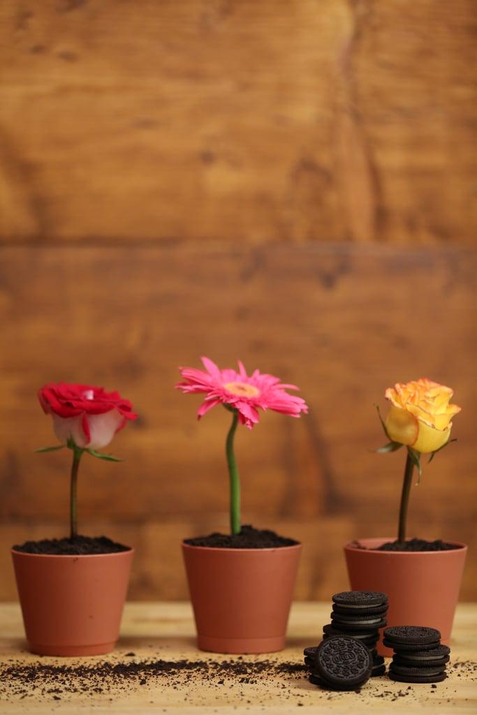 Flower-Pot Desserts