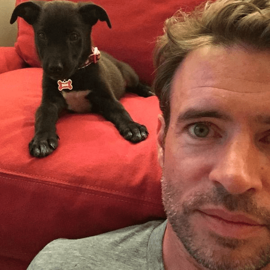 Scott Foley's Dog Pictures