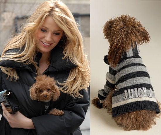 Found! Pretty Penny's Cozy Sweater