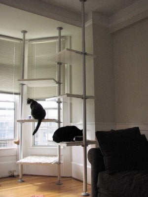 Ikea Closet Makes Great Cat Trees