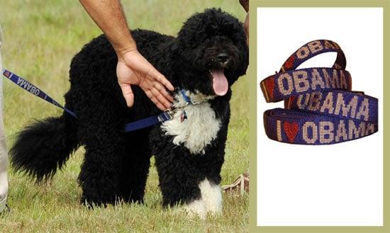 Found! Bo Obama's Collar and Leash Set