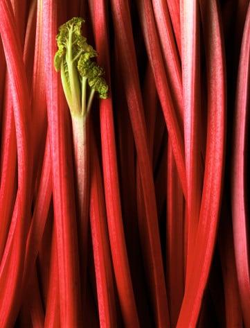 Yummy Links: From Rhubarb to the Swine Flu