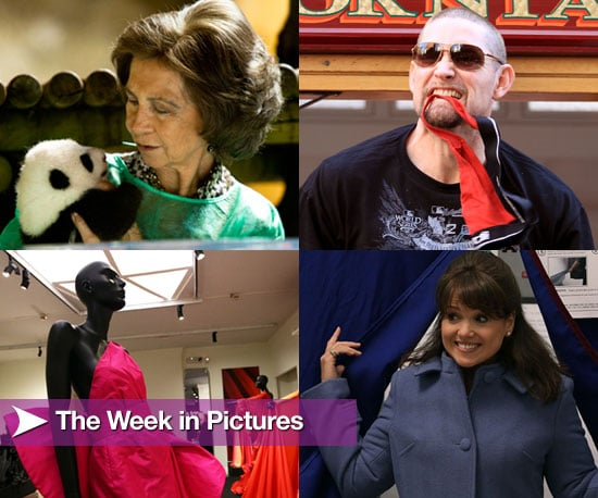 The Week in Pictures 2010-11-06 08:00:04