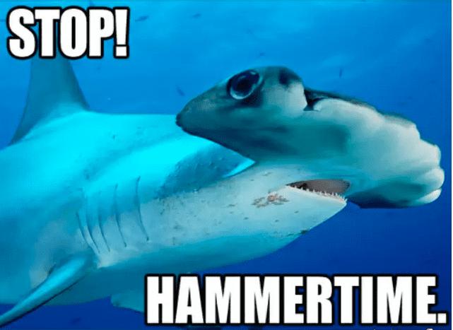 MC Hammer(head)