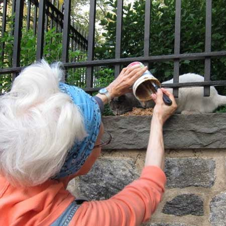 Meet Sheila Massey, NYC's Real-Life Cat Woman