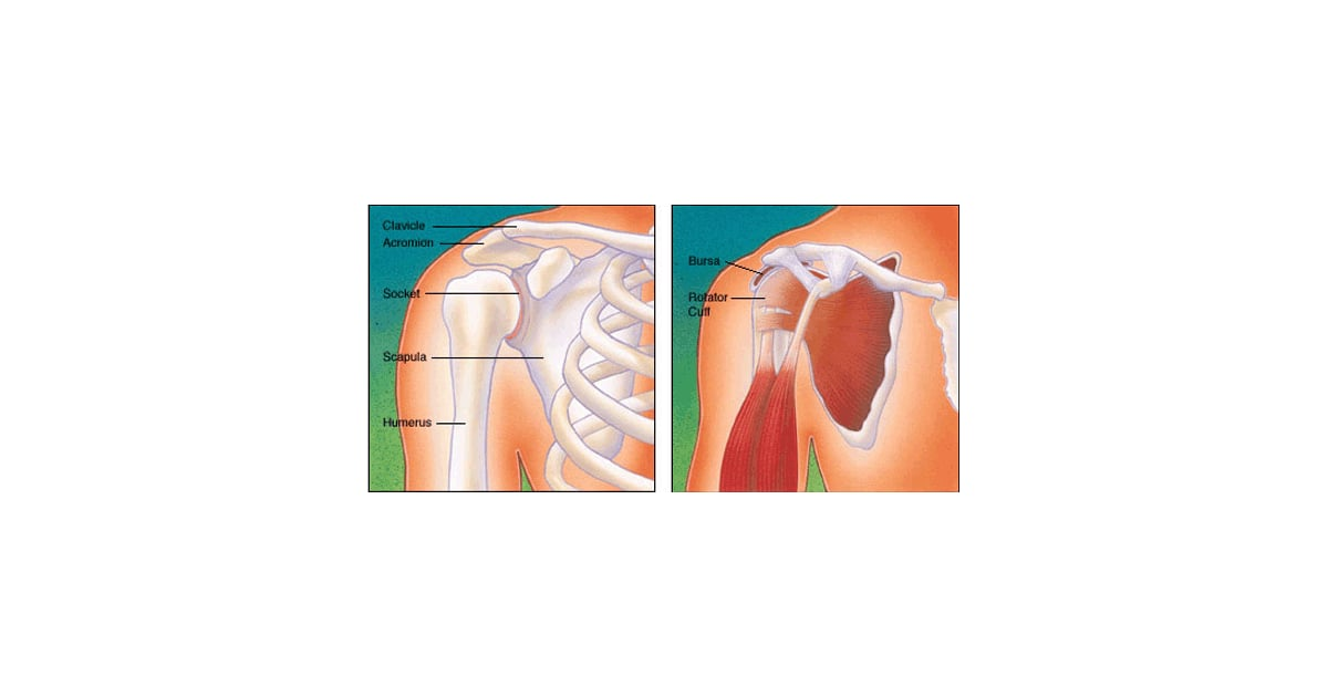 Torn Rotator Cuff Painful Shoulder Popsugar Fitness